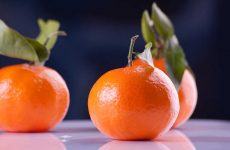 Sos clementine, le straniere invadono il mercato. A cosa fare attenzione