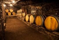 Cinque grappoli Bibenda 2017: Donnaluce Poggio le Volpi è tra i migliori vini d'Italia
