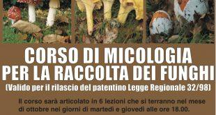 A San Cesareo un corso micologico per la raccolta dei funghi