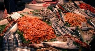Boutique del pesce, giugno un mese di grandi offerte a Palestrina