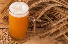 Al via la settimana della birra artigianale, tanti appuntamenti nella Capitale