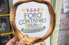 Foro Contadino, la festa dell'arte e del cibo a Roma