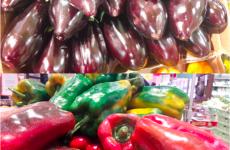 Da Tigre a Palestrina in esclusiva le melanzane e i peperoni di terra siciliana. Come fare la caponata (ricetta originale)