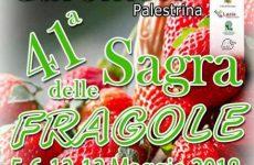 Sagra delle Fragole di Carchitti: la tradizione vanto di una comunità