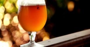 Una birra autunnale: la nuova proposta de La Taberna a Palestrina